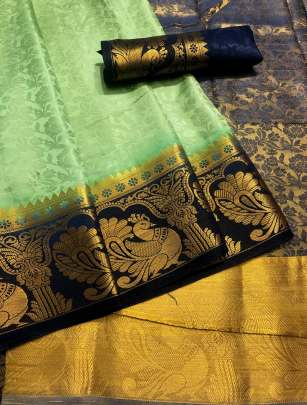 Chit Pallu Light Green Color